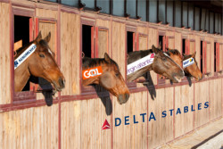 Delta Stables